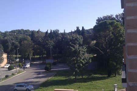 Comodo trilocale in mezzo al verde - Pesaro - Apartemen