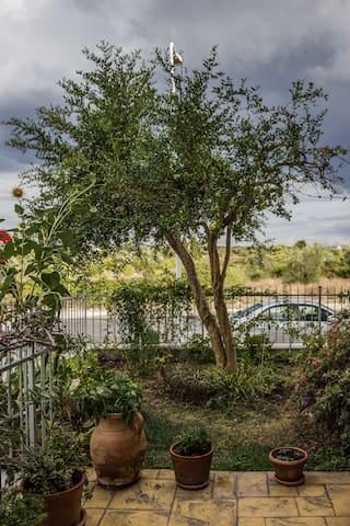 Garden House - Li Punti - Appartement