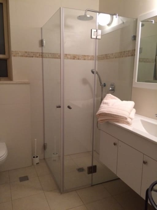 Spacious private bathroom with shower.
