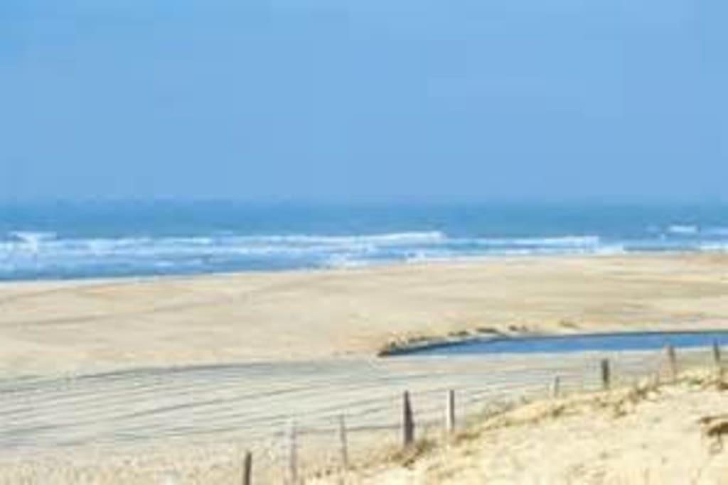 La grande plage de Moliets