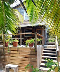 Beach house steps away from incredible snorkelling - Maison