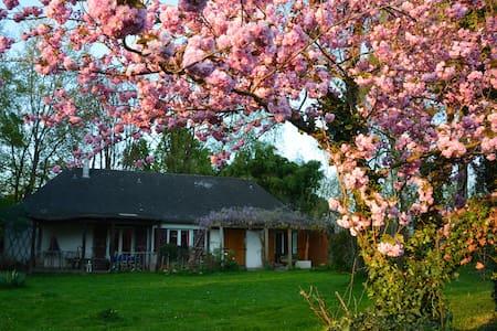 La maison sous les arbres - Saint-Gildas-des-Bois - Casa