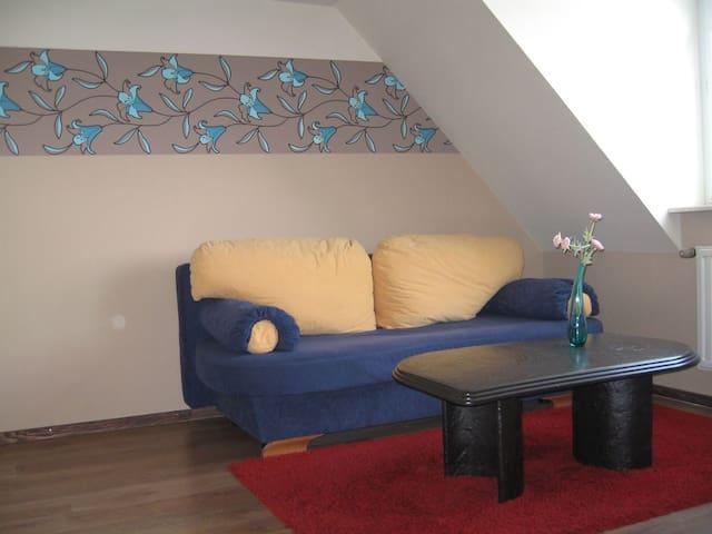 Ferienwohnungen Ansbach - Ansbach - Appartement