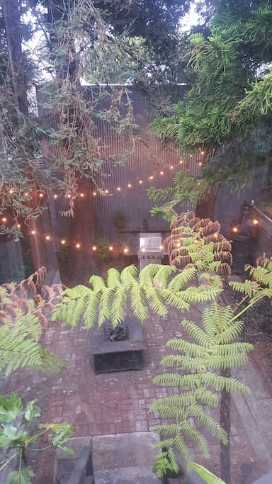 Private backyard with BBQ, fire pit and string lights along with 6 large trees.