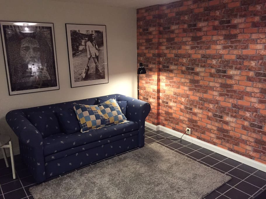 Your own private room with a bed sofa for two. An extra bed is available