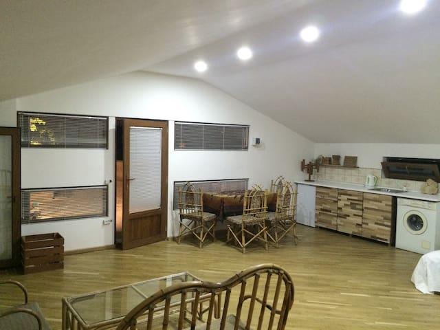 Sunny Studio Apartment