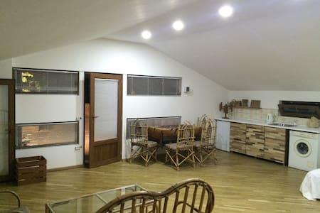 Studio Apartment In city center - Tbilisi - Apartamento