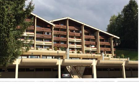 Nice apartment in center of Villars - Ollon - Flat