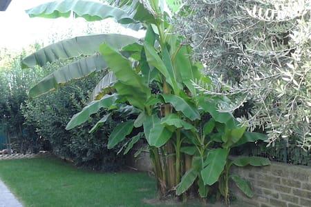 Il Giardino di Vejo  Camere - 羅馬