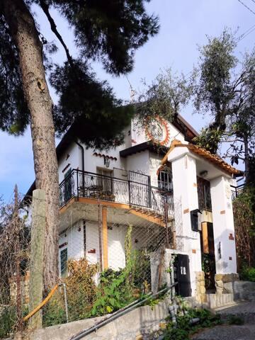 VILLA GLI ULIVI Sanremo - CITRA 008055-LT-0119