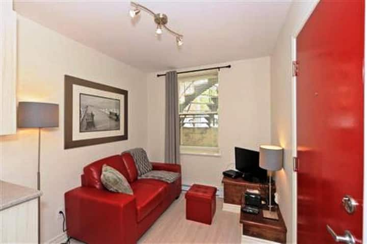#538 Stunning, Tastefully Furnished APT in Downtown East