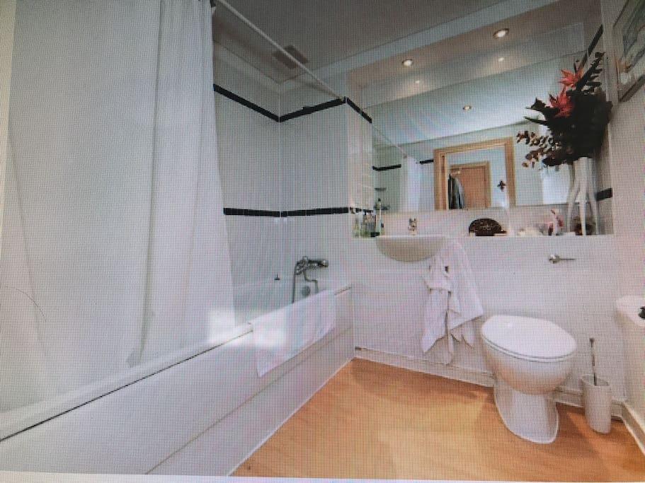 Beautiful big bathroom with bath and shower