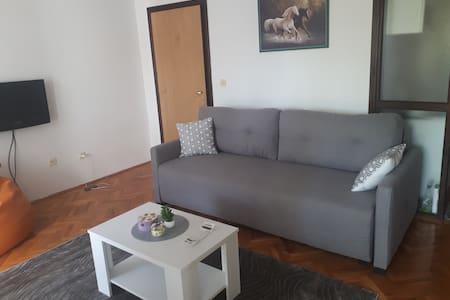 Apartment Lazara Sutomore