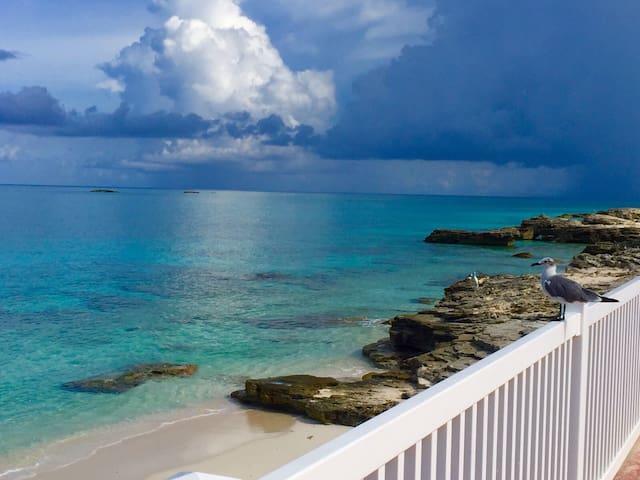 Sunset Paradise With Private Beach - Bimini - House