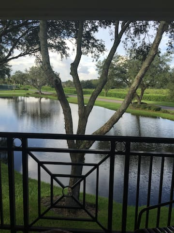 Tampa  Saddlebrook  Resort  Room - Wesley Chapel - Condo