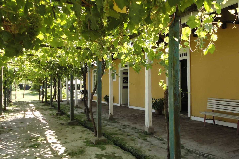 Colonial Country Estate In Chile Villas For Rent In Rengo O  # Muebles Quinta De Tilcoco