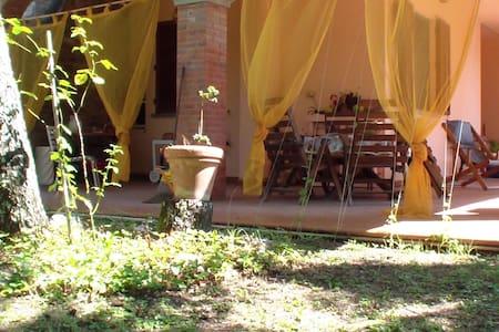 Charming house into the Tuscany - Castiglion Fibocchi  (AREZZO ) - Villa