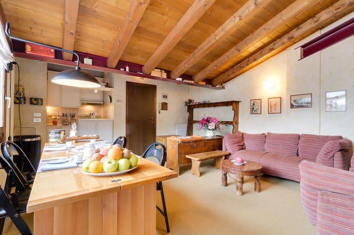 Cami's Mountain Home - Campo Carlo Magno - Квартира