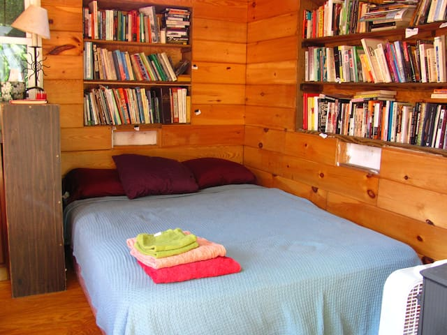 Futon bed downstairs and library