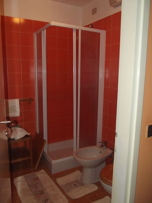 bagno privato con doccia.