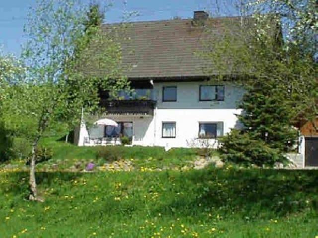 Haus Janßen-Wehrle - Titisee-Neustadt - Lyxvåning