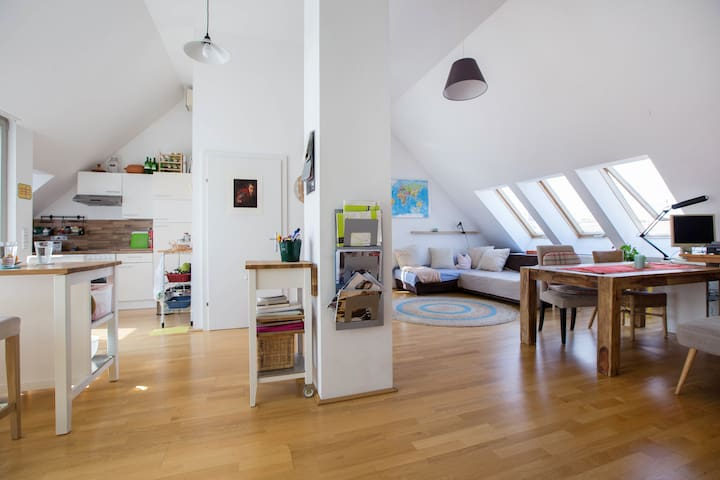 Roof top apartment with terrace - Wien