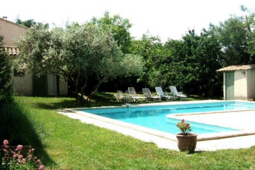 Gite piscine au c ur des alpilles maisons louer for Gite provence piscine