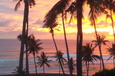 Matahari Surf Camp Sunset Treehouse - tabanan