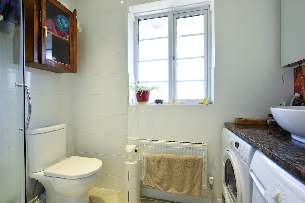 Shower room with laundry