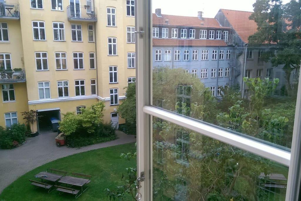 Hyggeligt gårdmiljø / Courtyard view