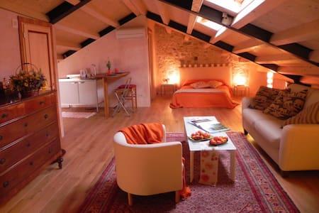 A charming place near Venice - 維托廖韋內托(Vittorio Veneto) - Loft空間