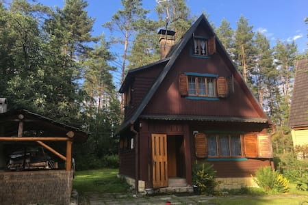 Chalet Orava -  forest and stream.