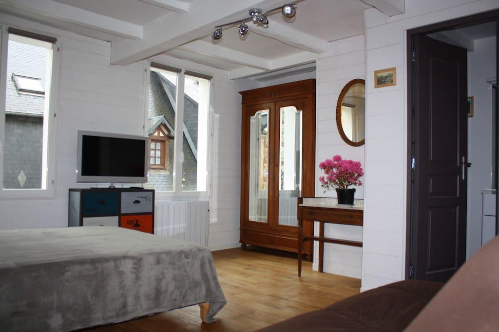 Pièce à vivre confortable; 1 lit double, 1 canapé-lit 2 places. WIFI GRATUITE.