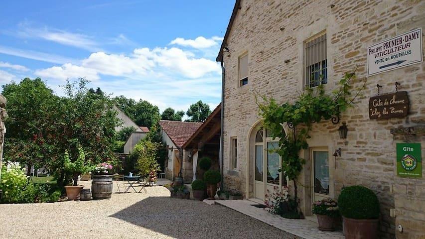 """""""Chez les Prunes"""" Maison de charme - Auxey-Duresses - Rumah"""