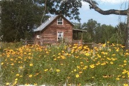 9E Ranch Texas Lone Star Log Cabin - Smithville