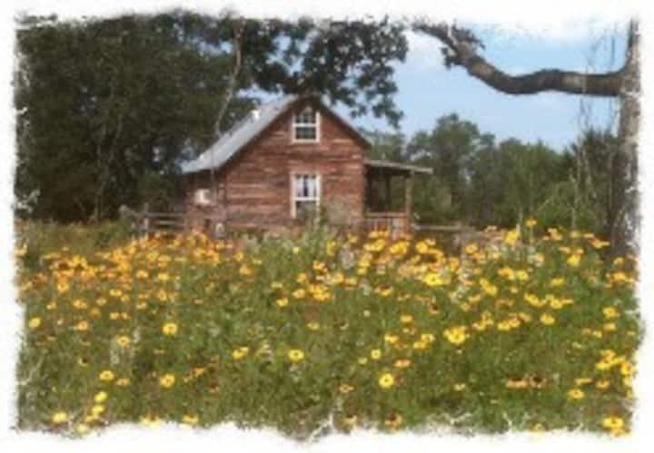 Texas  Lone Star Log Cabin 9E Ranch Bastrop