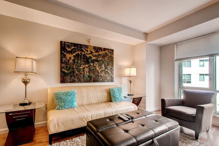2br furnished Apt. in Boston Fenway