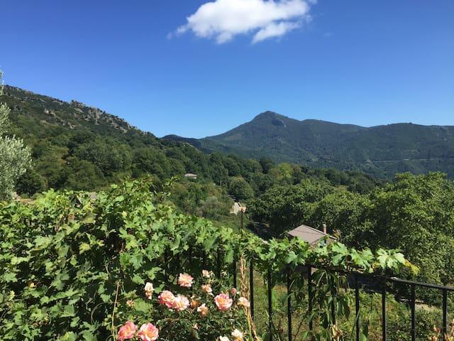 Maison de village Corse avec jardin - Matra - Villa