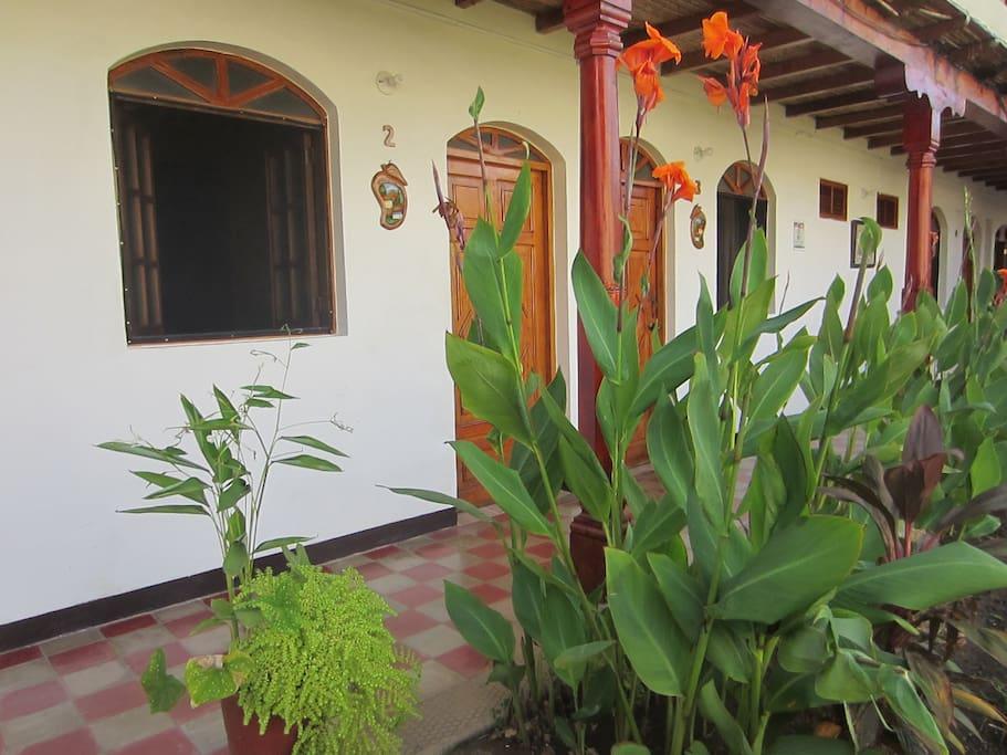 Jardín frente a  las habitaciones