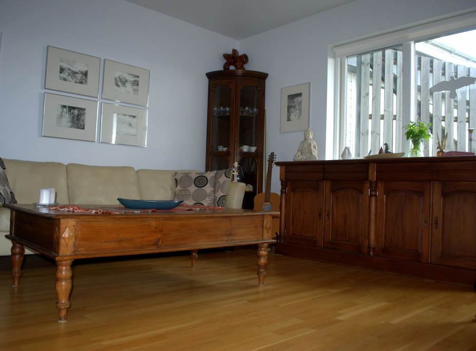 The living room is cozy and yet very spacious.