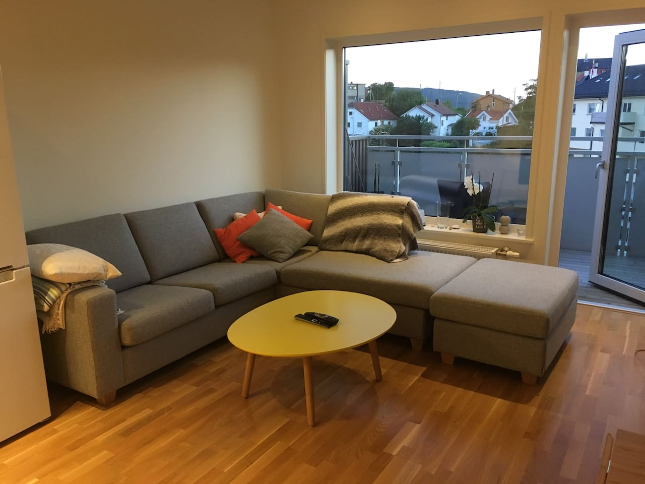 Living Room, the sofa can be used for one guest