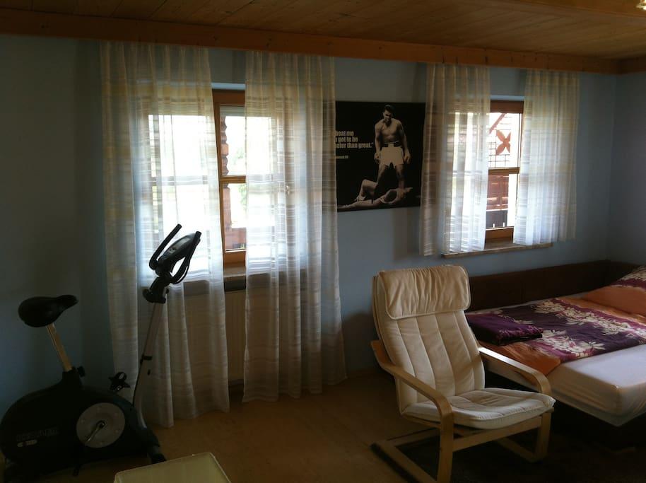 Hometrainer, zwei Fenster mit Blick auf den Balkon, Fernsehsessel.