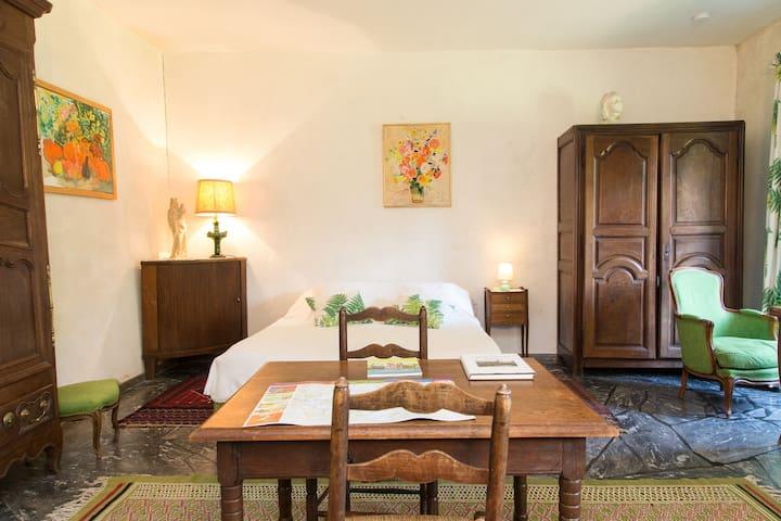 La Chambre Fougères du château - Cinq-Mars-la-Pile - Şato