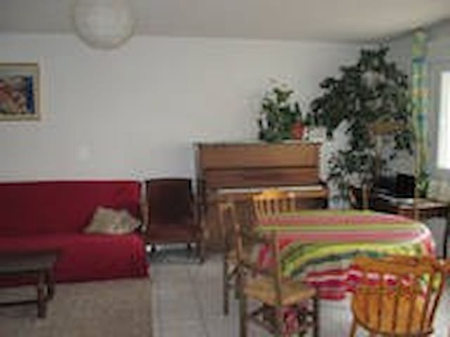one or two bedrooms in a 4 rooms apartment - Saint-Martin-d'Hères - Apartment