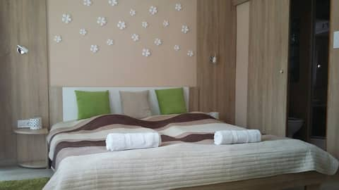 Studio Apartment 2. in LENTI