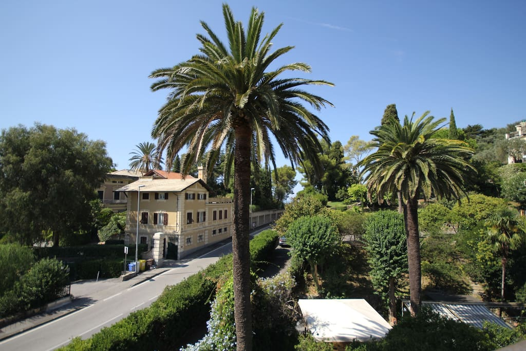 hotel bogliasco liguria - photo#32