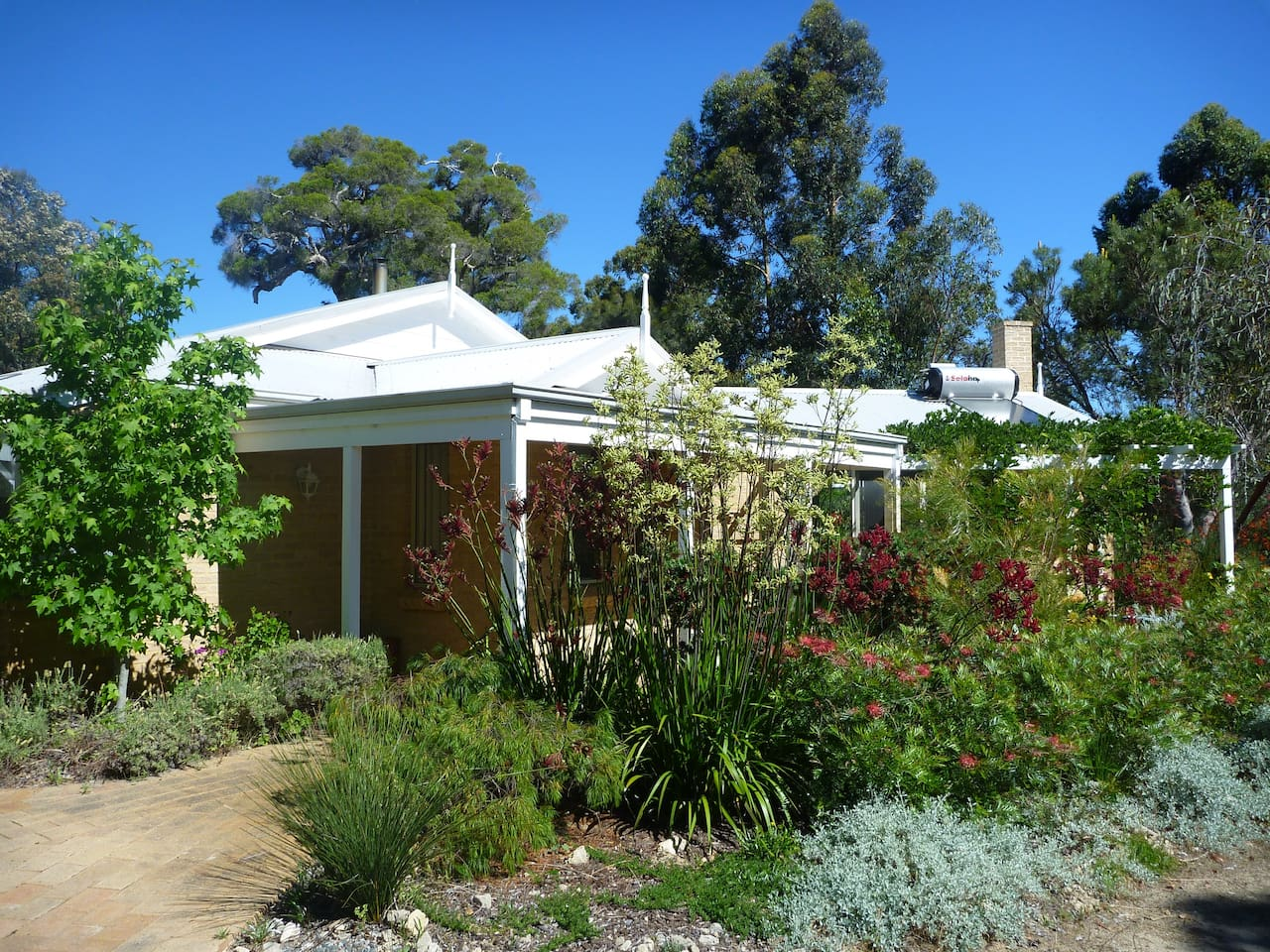 A home among the gumtrees. A view from every window