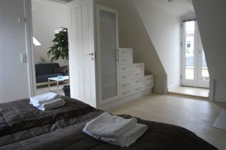 Explore this amazing city from this super central location. The room is spacious, with hardwood floors and a big double bed. The apartment is beautiful and cosy, with a good kitchen, laundry and living area (which I will be sleeping in). :-D