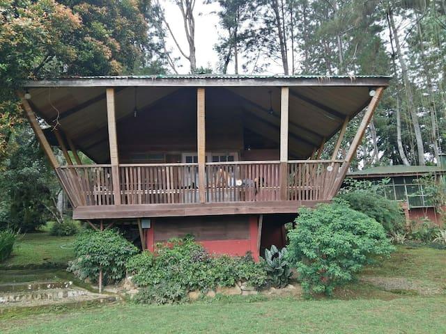 Sound Town - mountain cabin Davao - Davao City - Houten huisje