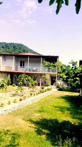 Gardenia Guesthouse - Lagodekhi - Wohnung